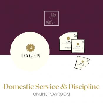 Online Play Room Domestic Service & Discipline